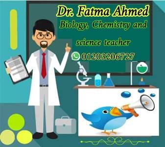 دكتورة فاطمة أحمد طالب اون لاين