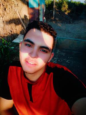 محمد هانى  | طالب اون لاين